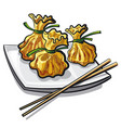 chinese steamed dumplings vector image vector image