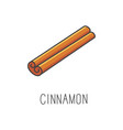 cinnamon line cooking vector image