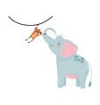 cute animals elephant and hanging monkey cartoon vector image