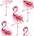 flamingo pattern watercolor exotic bird vector image vector image