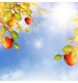 apple tree over blue sky vector image