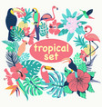 Collection of tropical birds palm leaves