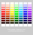color palette collection color rainbow color vector image