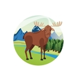 Deer icon Landscape background graphic vector image vector image