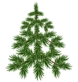Green Christmas Tree Fluffy fir Green pine tree vector image vector image