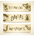 Insects banner set vector image vector image