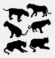 Tiger and panther wild animal silhouette vector image vector image