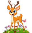 cartoon deer in grass vector image vector image