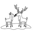 deer couple over grass in monochrome silhouette vector image