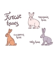 forest hares set vector image vector image