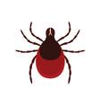 mite parasites tick parasite acarus vector image vector image