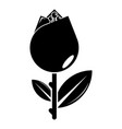 tulip icon simple black style vector image