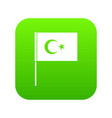 turkish flag icon digital green vector image