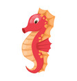 cute cartoon orange seahorse isolated vector image vector image