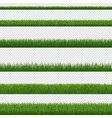 green grass border and transparent background vector image vector image