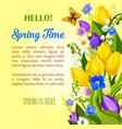 spring flowers blooming design greetings vector image