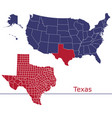 texas map counties with usa map vector image
