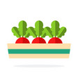 three beets in a long pot flat isolated vector image vector image