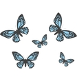 with realistic butterflies vector image vector image