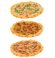 a set of different pizzas vector image vector image
