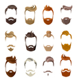 Beard And Hairstyles Face Set vector image
