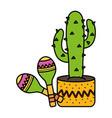 mexican cactu plant with maracas vector image