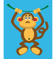 monkey on a vine vector image