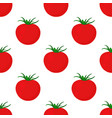 seamless tomato pattern isolated on white vector image vector image