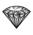 vintage monochrome diamond concept vector image
