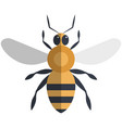 bee flat icon isolated on vector image