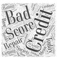 credit repair score Word Cloud Concept vector image vector image