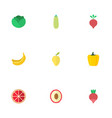 flat icons turnip litchi pumpkin and other vector image vector image