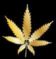 gold cannabis leaf vector image
