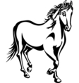horse 2 vector image