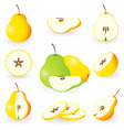 icon set pear vector image vector image