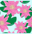 seamless pattern lotus flowers vector image