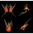 Set of Burn flame fire abstract background vector image