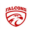 falcon or hawk head sport logo mascot design vector image