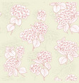 flower pattern of hydrangea flowers vector image vector image