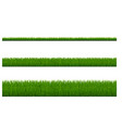 green grass borders isolated white background vector image vector image