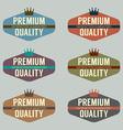 Set of Vintage Retro Badge vector image vector image