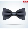 Realistic black bow tie vector image
