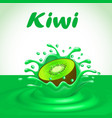a splash of fruit juice kiwi vector image vector image