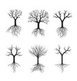 black trees without leafs vector image vector image