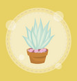 cute succulent plant in pot vector image vector image