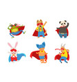 funny animals in superhero costumes vector image vector image