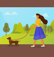 girl in blue skirt is walking brown dog in green vector image
