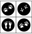 Human and bird feet cat dog paws black white flat vector image vector image