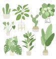 interior home indoor plants set vector image