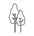 line natural trees with botany icons vector image vector image